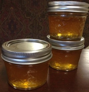 Lemon Honey Jelly 2014 0983 (c)2014 Brandon L. Blankenship Pelham Hoover Birmingham Attorney Lawyer